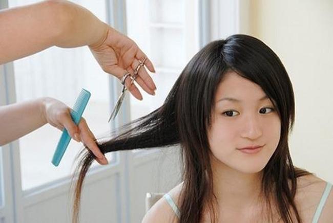 cắt tóc khô xơ